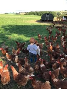 Leo loves his hens