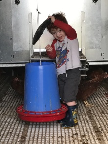 Arthur leaning how to feed the hens